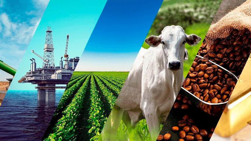 Você Sabe o que são as commodities e como elas impactam nosso dia a dia?